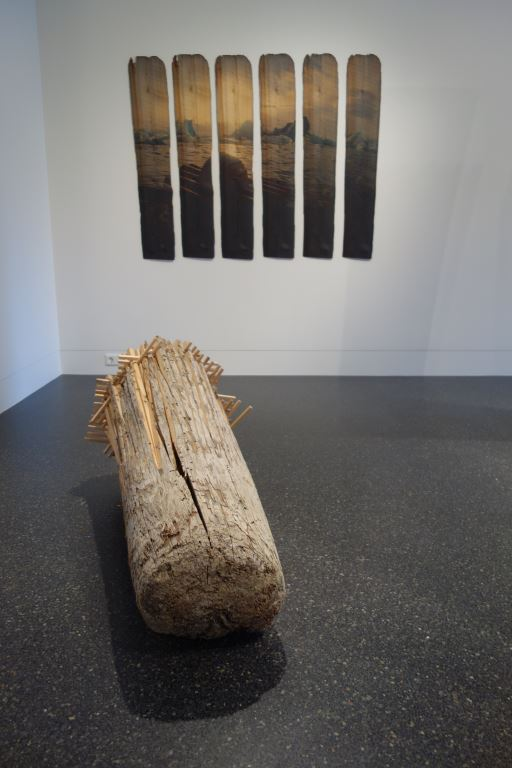 Rappaport: Driftwood